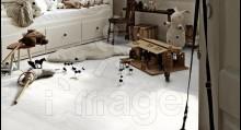 Ламінат Meister LC 200 6320 Модрина біла Німеччина