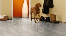 Ламінат My-Floor Villa М1219 Дуб Чудовий білий Німеччина