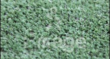 Штучна трава MoonGrass 8 мм Китай
