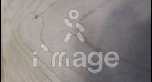 Фанера 1525*1525*6мм ФК (0625482) Береза