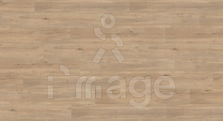 Ламінат Wineo 500 XXL LA186LV4 Дуб дикий золотисто-коричневий Німеччина