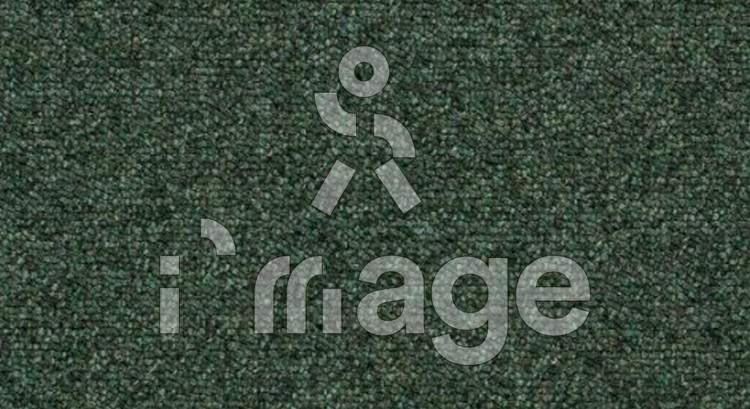 Коврова плитка Forbo Tessera Basis 386 Foliage Англія