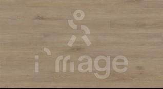 Ламінат Haro Tritty 100 Loft 538719 Oak Veneto Crema Німеччина